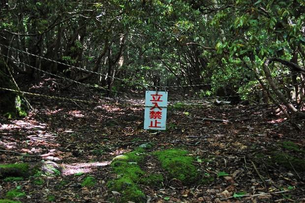 nbspAokigahara... Autors: Zakjite 8 pašas baisākās vietas pasaulē